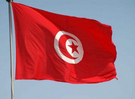 Seminario eTwinning in Tunisia su approcci interdisciplinari STEM/STEAM