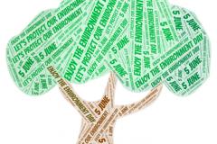 Premio nazionale eTwinning 2019 al progetto Green Grass dell'Istituto Comprensivo J. Stella di Muro Lucano
